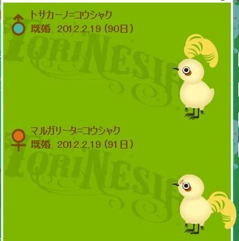 Tori1205204