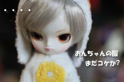 Img_0683trn